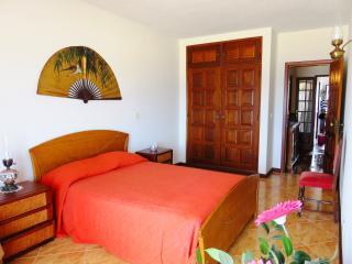 Fantastic Ocean/Beach Front Condo - Nazare vacation rentals