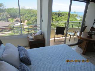 WAIKIKI CONDO W/  SPECTACULAR OCEAN & PARK VIEWS - Waikiki vacation rentals