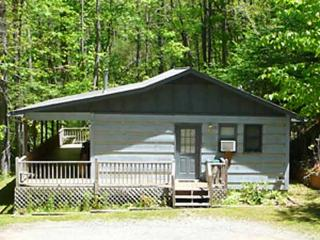 Perfect Cabin with Deck and Internet Access - Cherokee vacation rentals