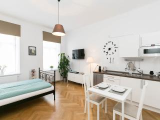 Stylish Apartment near Center - Vienna vacation rentals