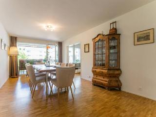 Spacious, modern & central with large balcony - Basel vacation rentals