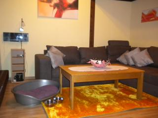 2 bedroom Apartment with Deck in Bad Duerrheim - Bad Duerrheim vacation rentals