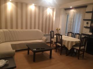 Apartmet on 70 Aram Str. - Yerevan vacation rentals