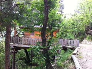 Spacious Tende Tree house rental with Balcony - Tende vacation rentals