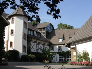 Moulin 16e Parc Naturel des Vosges du Nord (22 pers. max.) - Ingwiller vacation rentals