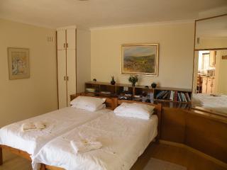 Comfortable 1 bedroom Condo in Vredehoek - Vredehoek vacation rentals