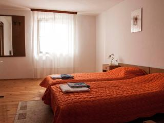 David's Apartment near the sea - Porec vacation rentals