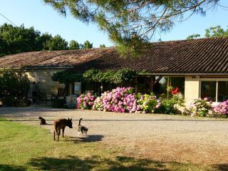 Chambre d'hôtes avec piscine Les Calèches d'Annika - Miramont-de-Guyenne vacation rentals