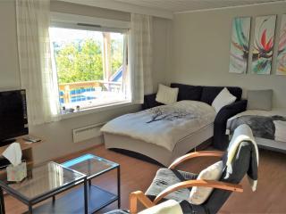 Studio rental in Narvik - Narvik vacation rentals