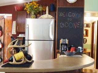Near Town/ASU~Fun, Funky Uber-Casa~Prime Location - Boone vacation rentals