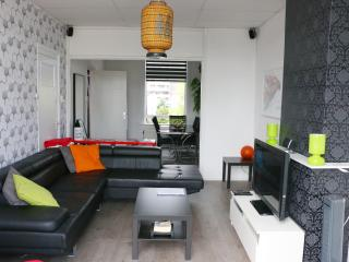 Comfortable Apartment City Center The Hague - The Hague vacation rentals