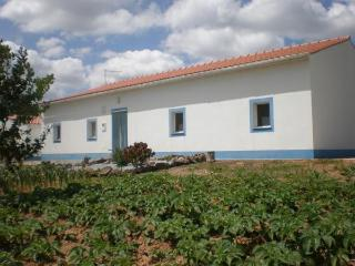Bright 5 bedroom House in Montemor-o-Novo - Montemor-o-Novo vacation rentals