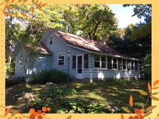Nice Cottage with Deck and Internet Access - Fennville vacation rentals