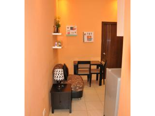1 BR @ Ridgewood Tower-1-17th near SM AURA Mall - Taguig City vacation rentals