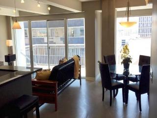 Downtown Austin Luxury Condo - 30 day min rental - Austin vacation rentals