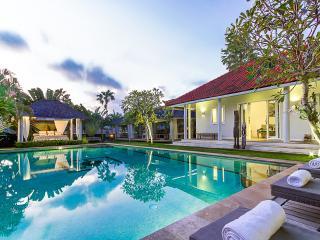 Beautiful Villa * Chef * Yoga Bale * Spa * Retreat - Bali vacation rentals