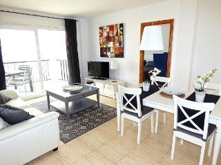 Fantastic large furnished 3bedroom apartment - L'Alfas del Pi vacation rentals