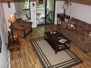 Athens, GA Walking Distance to UGA Campus - Athens vacation rentals