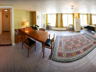 Canal view apartment in the Center - Amsterdam vacation rentals