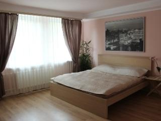 Nice Condo with Internet Access and Central Heating - Strelna vacation rentals