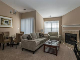 1 bedroom Condo with Internet Access in Schaumburg - Schaumburg vacation rentals