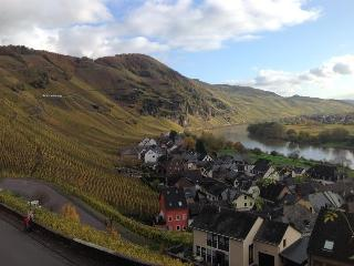 Middle Mosel | Adventure, Sporting or Relaxing Spa - Urzig vacation rentals