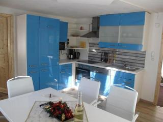 Nice 2 bedroom Condo in Russbach am Pass Gschutt - Russbach am Pass Gschutt vacation rentals