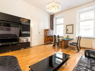 Beautiful Classical Viennese Apartment from 1900 - Vienna vacation rentals