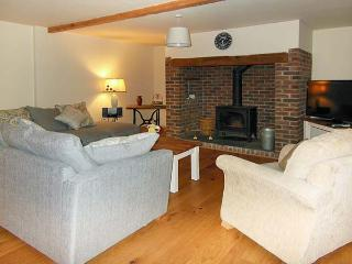 THE BARN AT MAESTEILE, Sky TV, WiFi, superb country views, en-suite facility, mulit-fuel stoves, near Llanybydder, Ref. 916883 - Llanybydder vacation rentals