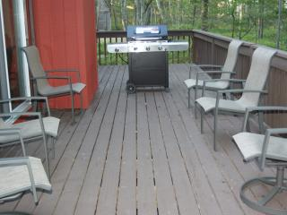 Newly remodeled home n the Poconos - Bushkill vacation rentals
