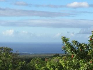 1 bedroom House with Deck in Naalehu - Naalehu vacation rentals