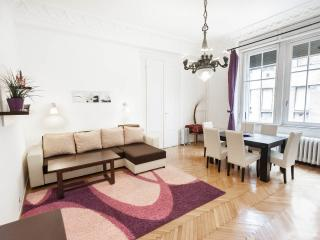 Huge and comfortable city center apartment - Budapest vacation rentals