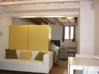 LOFT IN THE HEART OF OLD TOWN - Palma de Mallorca vacation rentals