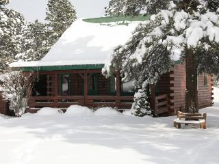 1 Little Rabbit is a charming, 3 bedroom, rustic cabin rental in Pagosa Springs. - Pagosa Springs vacation rentals