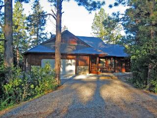 Capitan is a beautiful vacation home in Pagosa Springs backing up to the National Forest and Martinez Canyon. - Pagosa Springs vacation rentals