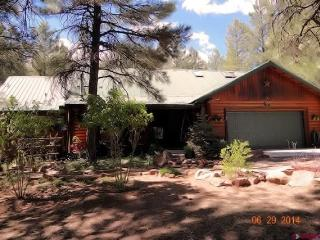 722 Antelope Circle - Pagosa Springs vacation rentals