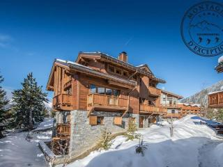 Comfortable Courchevel Chalet rental with Fitness Room - Courchevel vacation rentals