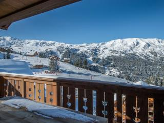 Perfect Condo with Internet Access and Fitness Room - Meribel vacation rentals