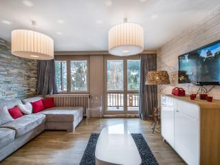 Perfect House with Balcony and Internet Access in Meribel - Meribel vacation rentals