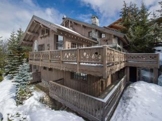 Beautiful 7 bedroom Chalet in Meribel with Internet Access - Meribel vacation rentals