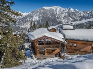 Beautiful 5 bedroom Chalet in Courchevel with Internet Access - Courchevel vacation rentals