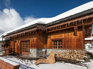 Gorgeous Chalet with Internet Access and Fitness Room - Meribel vacation rentals