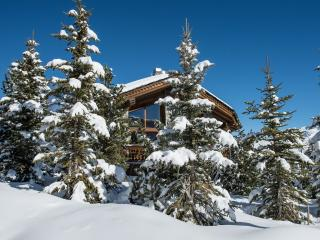 Perfect Chalet with Fitness Room and Hot Tub in Courchevel - Courchevel vacation rentals