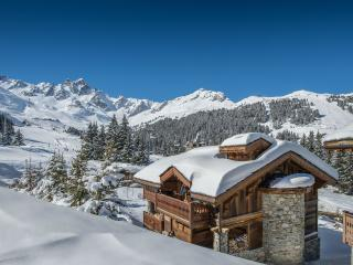 Perfect Chalet with Internet Access and Sauna - Courchevel vacation rentals