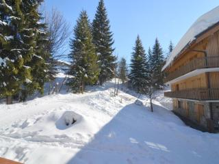 Apartment Gonzales - Meribel vacation rentals