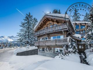 Beautiful 5 bedroom Courchevel Chalet with Private Outdoor Pool - Courchevel vacation rentals