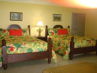Kelso Villa 3BR - Duncans vacation rentals