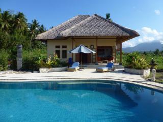 Villa Matahari, new, idyllic, 14 m pool,East Bali - Abang vacation rentals