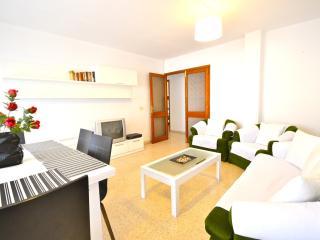 Apartment in Palma de Mallorca, Mallorca 102337 - Manacor vacation rentals