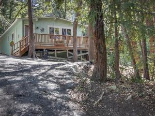 Comfortable, updated cabin in the woods near parks and trails! - Felton vacation rentals